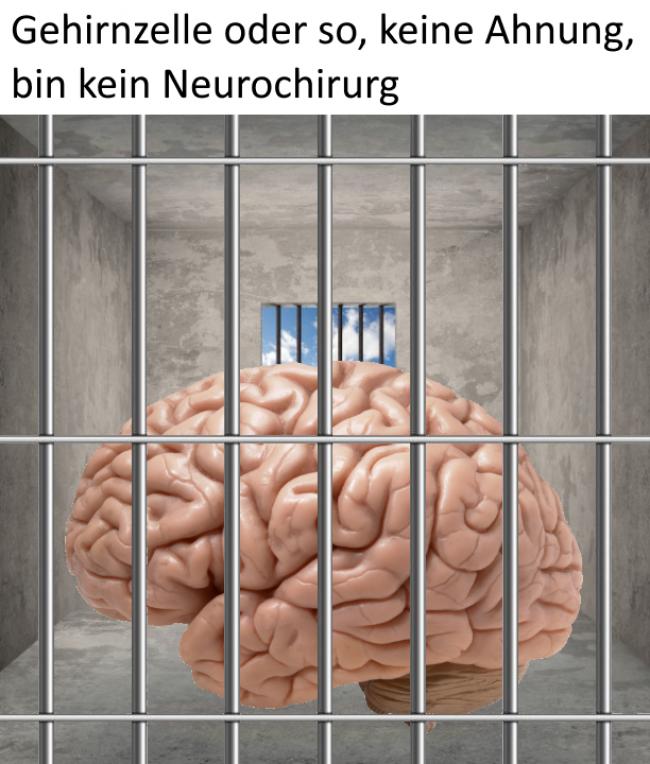 braindump-019-2021-58