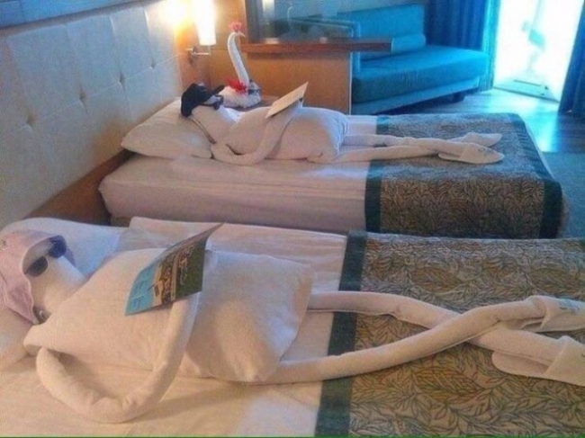 hotel_24